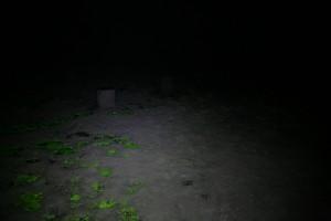 http://www.lukassander.com/files/gimgs/th-35_IMG_5255_v2.jpg